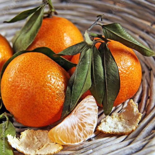 mandarinen © kristina rütten