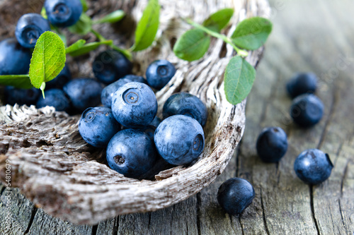 Blueberry © Sunny Forest