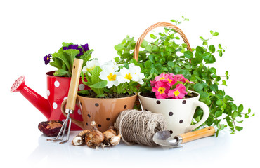 flowers in pot with garden tools