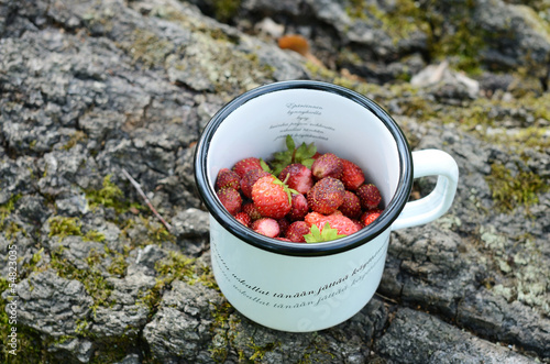 Wild strawberry in metal cup
