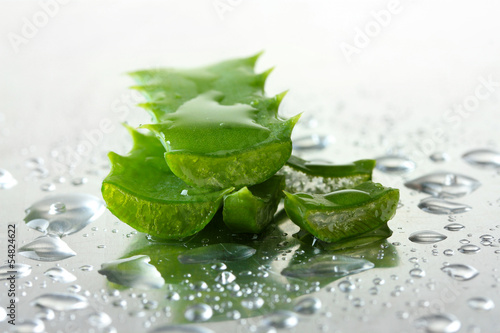Close up of aloe leaves with drops