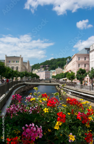Karlovy Vary, river over flowers