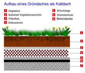 Aufbau eines Gründaches als Kaltdach