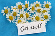 Get well card with chamomile flowers on blue background
