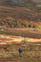 Hikers on the moors in autumn colors
