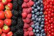 Beeren Früchte in einer Reihe