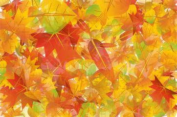 Colorful autumn leaves background illustration