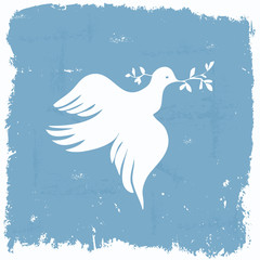 Peace dove wallpaper in grunge frame