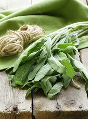 bunch of fresh green sage  on a wooden table