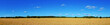 wheat field panorama - 54849605