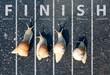 Leinwanddruck Bild - Snail run near the Finish line