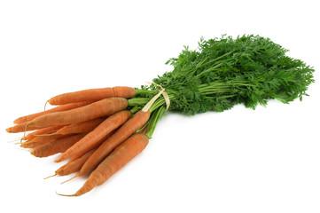 botte de carottes et fanes 3