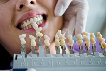 dental artificial limb