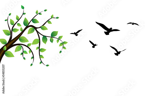 bird flying around a tree green branch, vector