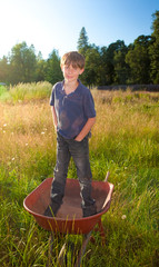 A real life young boy standing in a wheelbarrow
