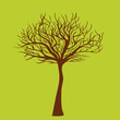 Tree without leafs, vector illustration