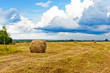 Beautiful countryside landscape. Round straw bales in harvested