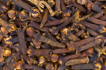 Close-up of dried cloves
