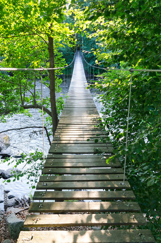 Swedish suspension bridge over Morrum river - 54860057