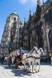 Horse-drawn Carriage in Vienna at the famous Stephansdom Cathedr