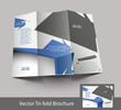 Tri-fold brochure design, vector illustartion.