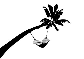 Palme mit Hängematte