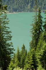 See in türkis und Bäume