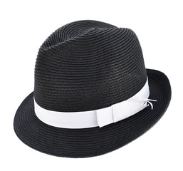 Fedora like hat isolated