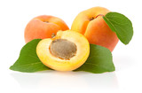 Ripe Apricots with Leaves Isolated on White Background