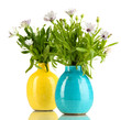 Bouquet of beautiful summer flowers in color vases, isolated