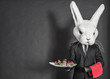 Rabbit waiter man in black suit stay at dark gray background - 54867614