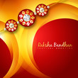 vector rakhi background