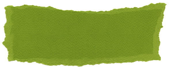Isolated Fiber Paper Texture - Olive Drab XXXXL