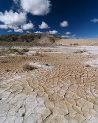 Desert Landscape - Mojave Desert, California, USA.
