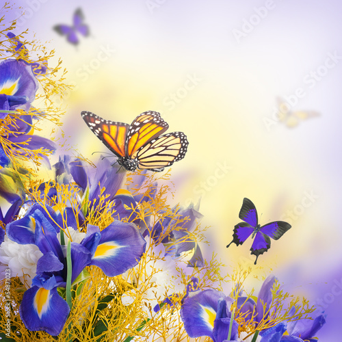 Foto op Canvas Iris Bouquet of blue irises, white flowers and butterfly