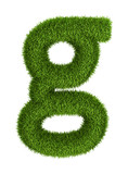 Natural grass letter g lowercase