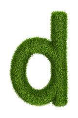 Natural grass letter d lowercase