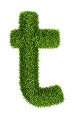 Natural grass letter t lowercase