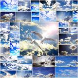 Collage: Freiheit, Himmel, über den Wolken :)