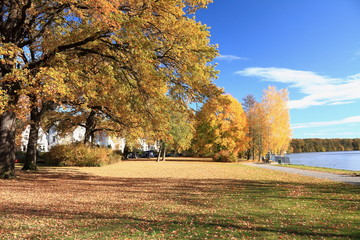 Herbst in Berlin Köpenick 3