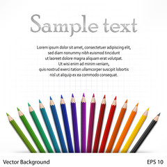 Many colored wooden pencils on white sheet, vector illustration