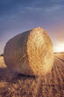 Round bales of straw