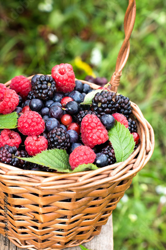 Basket of assorted berries