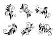 Set of vintage floral elements