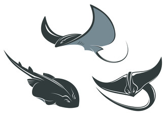 Stingray mascots