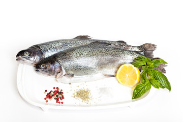 Raw fresh trout with basil, spice and lemon