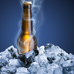 Beer bottle with chill smoke on ice cube