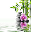 Leinwandbild Motiv purple orchid flower end bamboo on water