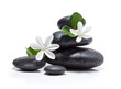 tiare flowers, candle and black stone spa
