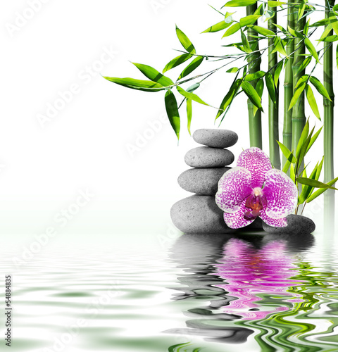Foto op Aluminium Ontspanning purple orchid flower end bamboo on water